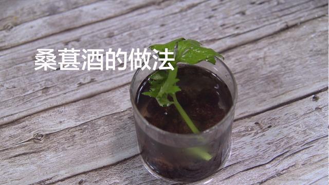 蓝莓怎么泡酒_怎么自制桑葚酒-百度经验