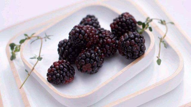 蓝莓怎么泡酒_如何泡桑葚酒-百度经验